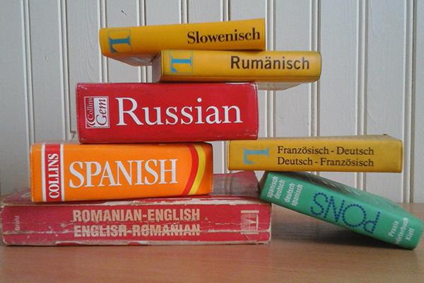diccionarios traductor profesional